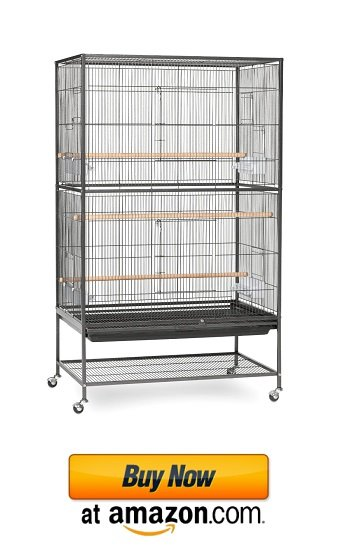 Wondrous big sugar glider cage set up example on amazon.