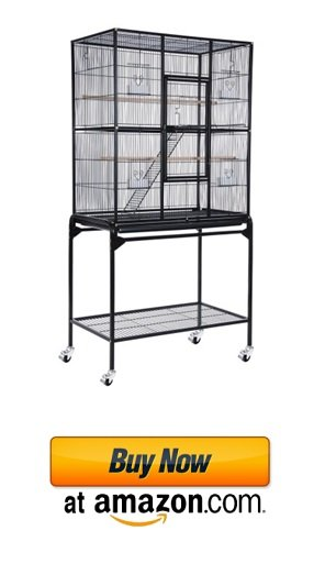 Big sugar glider cage set example on amazon.