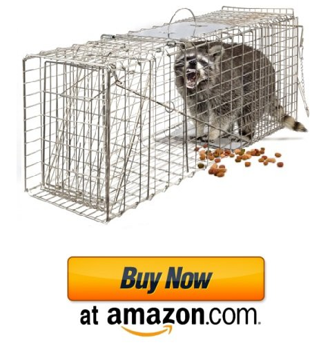 Example of how to catch armadillos.