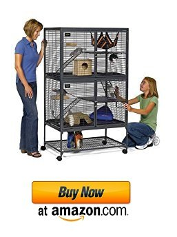Great large sugar glider cages sets to find online in 2017